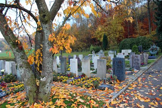 Friedhof Mägenwil